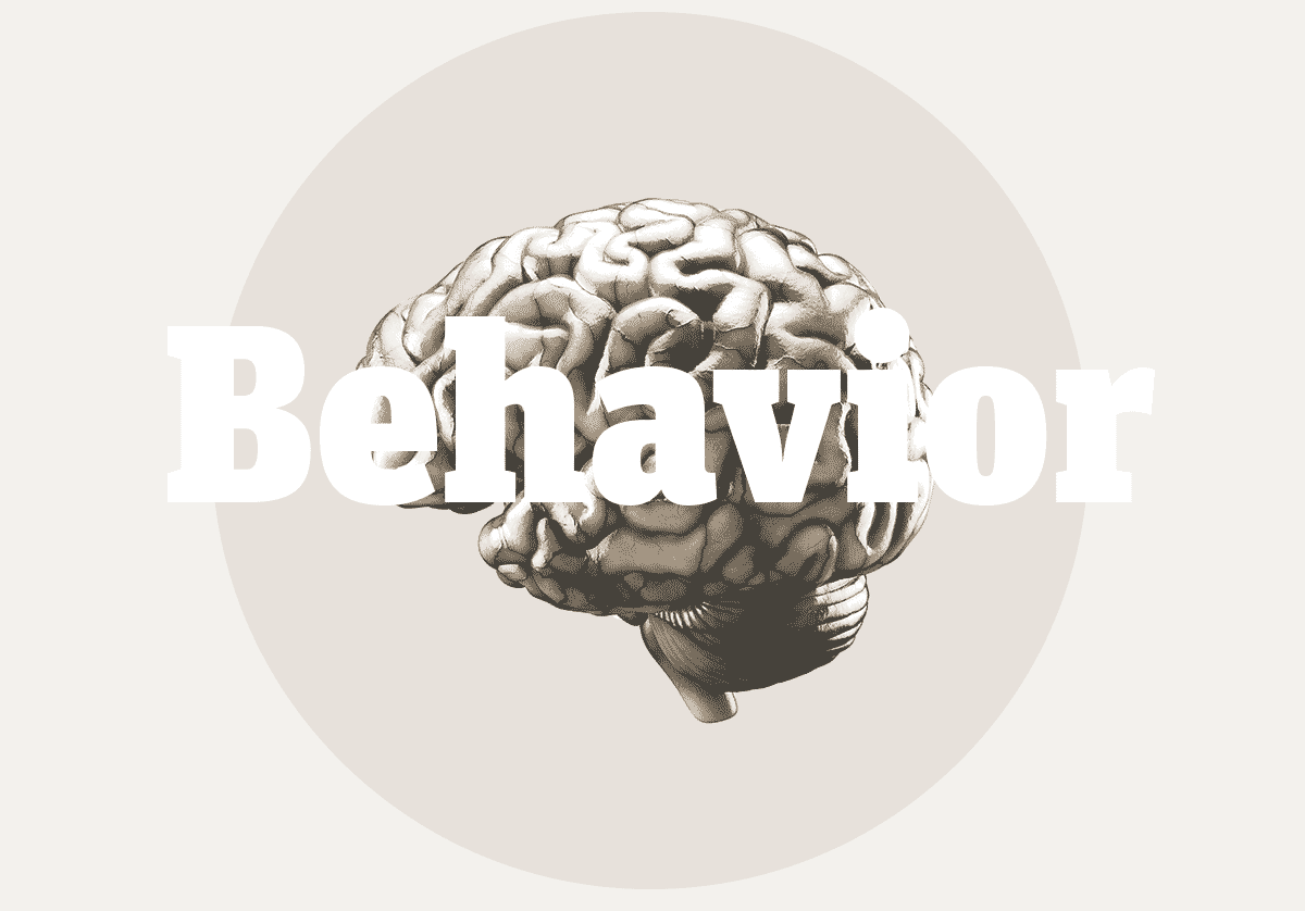 ApproachBrainBehavior.png