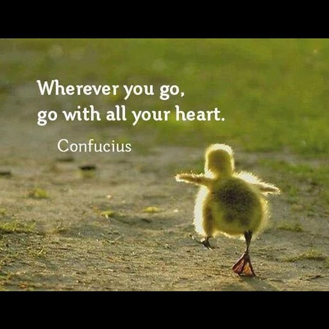 #yogachick 💛💛💛 #mondaymantra #confucius #enjoythejourney #hiyo
