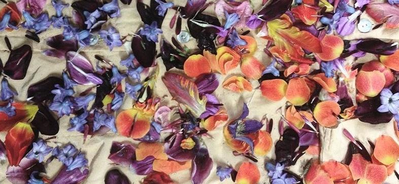 workshop-blomsterfarvning-1_kbh-plantefarveri.jpg