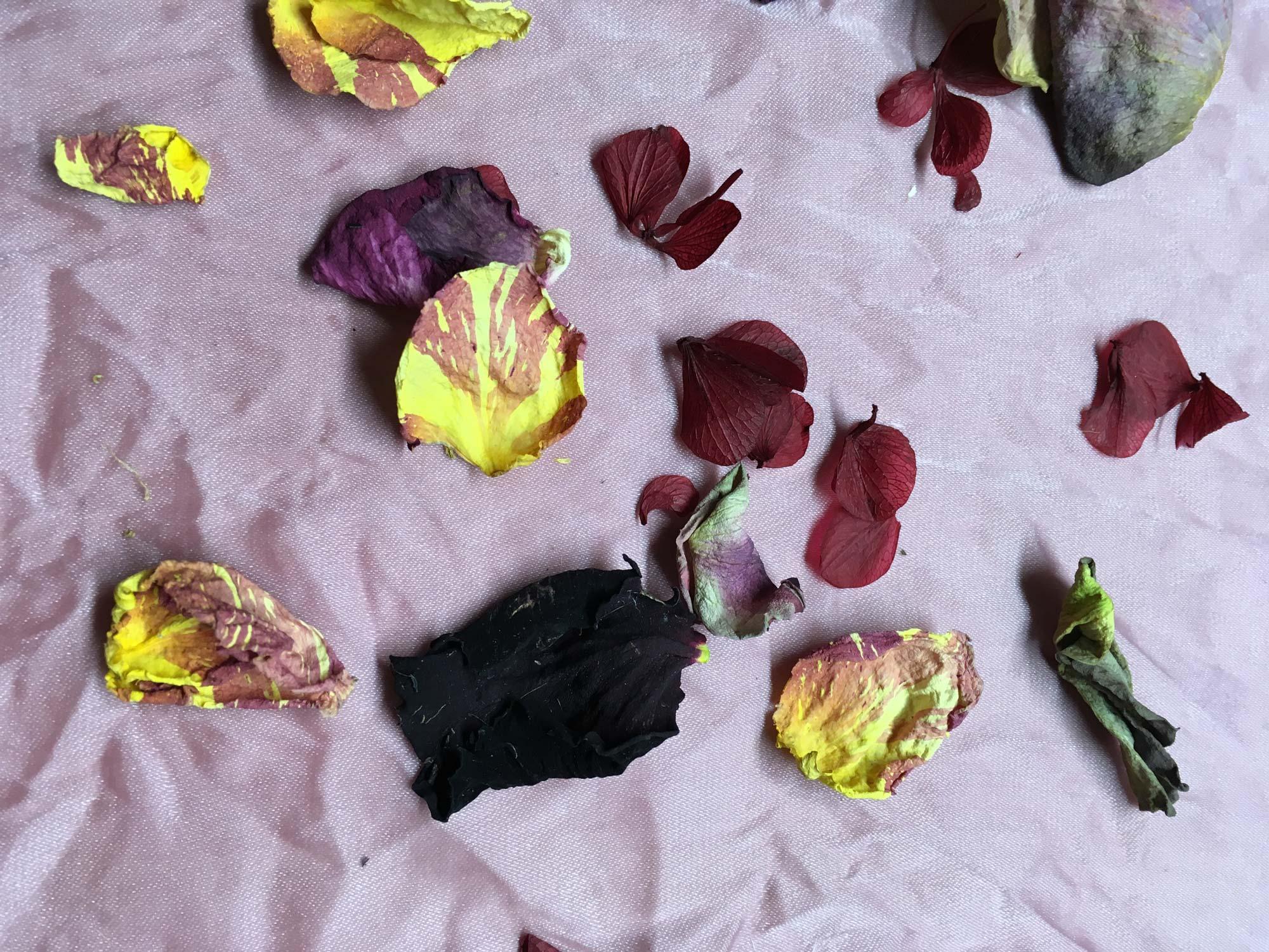 koebenhavns-plantefarveri-flowerscape-collection-detail_web.jpg