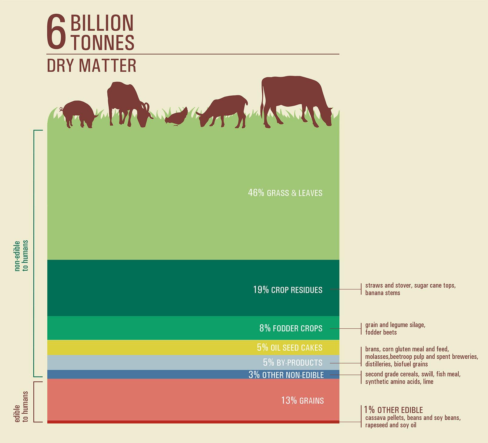2017_Infografica_6billion.jpg