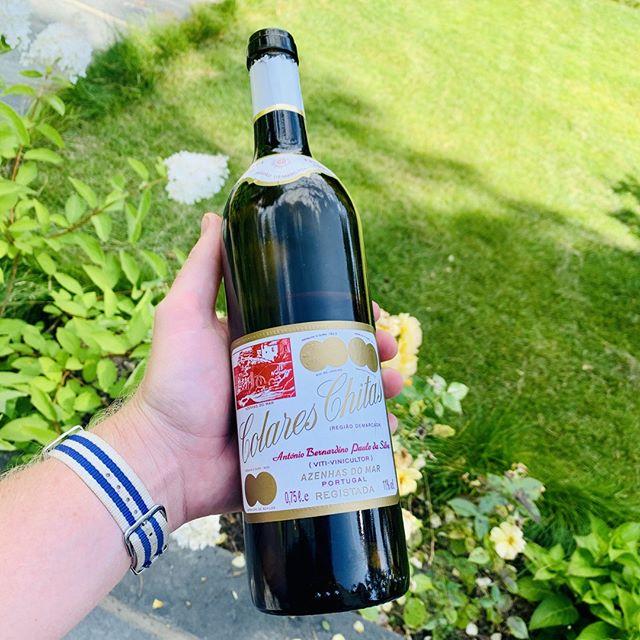 🍇Har du smakt Colares Chitas? . Colares er en av vinene som du ofte kan finne med litt alder (som den tåler), til ikke altfor gale priser. . Vinen kommer fra Colares-regionen sør-vest i Portugal, ikke langt fra Lisboa. De lages av Ramisco-druen, som faktisk ikke vokser noen andre steder i verden i noe særlig kvantum. Vinrankene er spesielle fordi de ikke har blitt podet på amerikanske vinstokker for å beskytte seg mot Phylloxera. . De trenger ikke beskytte seg fordi vinrankene vokser på sandstrender, ikke langt fra havet - og det er denne sanden som holder Phylloxera unna. Vinden fra Atlanterhavet er så sterk i regionen at vinmakere har satt opp enkle gjerder for å beskytte vinrankene. Sterk nedbør på høsten er en trussel som kan ødelegge hele avlingen. . Det blir mindre og mindre Colares dyrket hvert år, og DN skrev i juni at 2000-årgangen sannsynligvis er den siste som kommer fra Chitas her til lands. . ❓Har du smakt den? Hva synes du? . 🇵🇹 Colares, Portugal 🍇 100% Ramisco 💰400 kr 🔢 Polnr 3963301