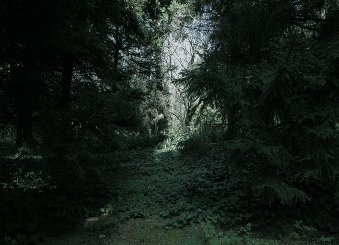 selva-urbana-8.jpg