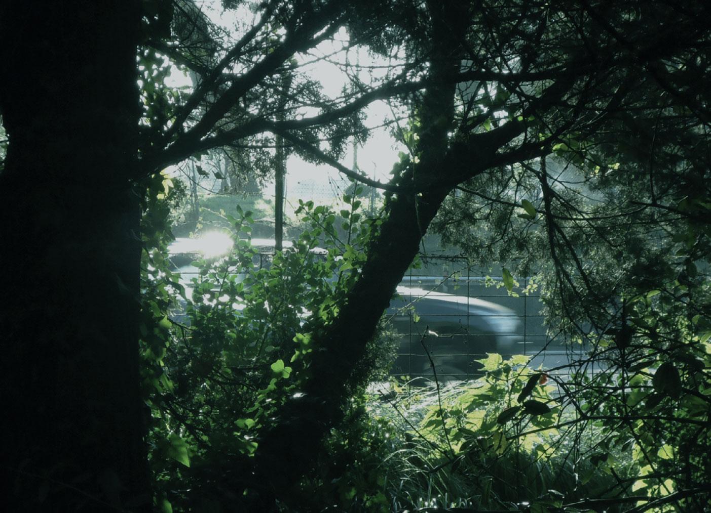 selva-urbana-10.jpg