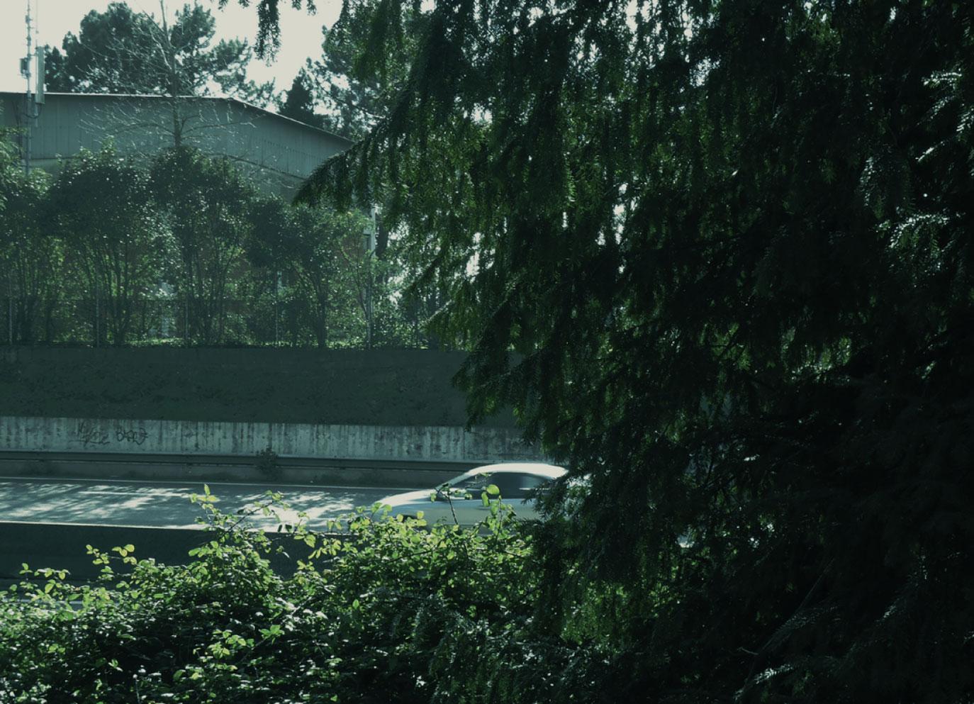 selva-urbana-14.jpg