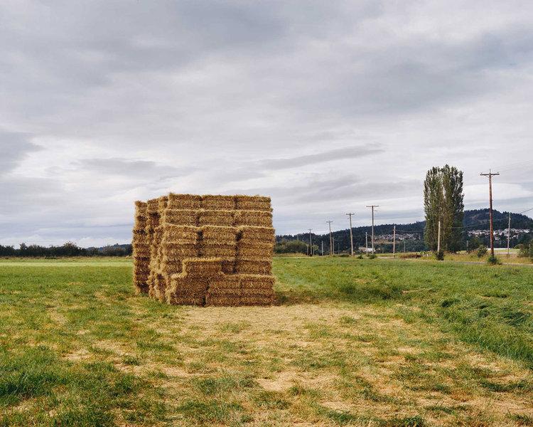4_haystack_0-2.jpg