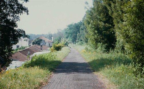 sofia-santos_uma-linha-na-paisagem_04.jpg