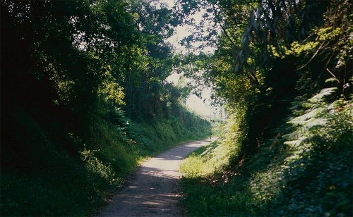 sofia-santos_uma-linha-na-paisagem_07.jpg