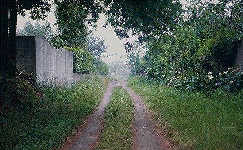 sofia-santos_uma-linha-na-paisagem_11.jpg