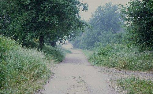 sofia-santos_uma-linha-na-paisagem_13.jpg