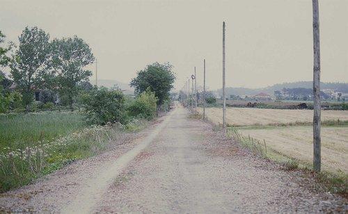 sofia-santos_uma-linha-na-paisagem_20.jpg