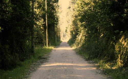 sofia-santos_uma-linha-na-paisagem_25.jpg