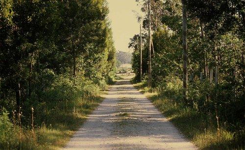 sofia-santos_uma-linha-na-paisagem_26.jpg