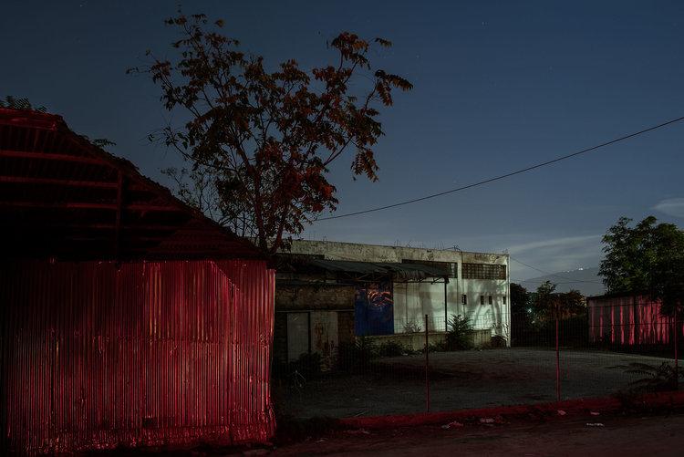 dark_tree-4.jpg