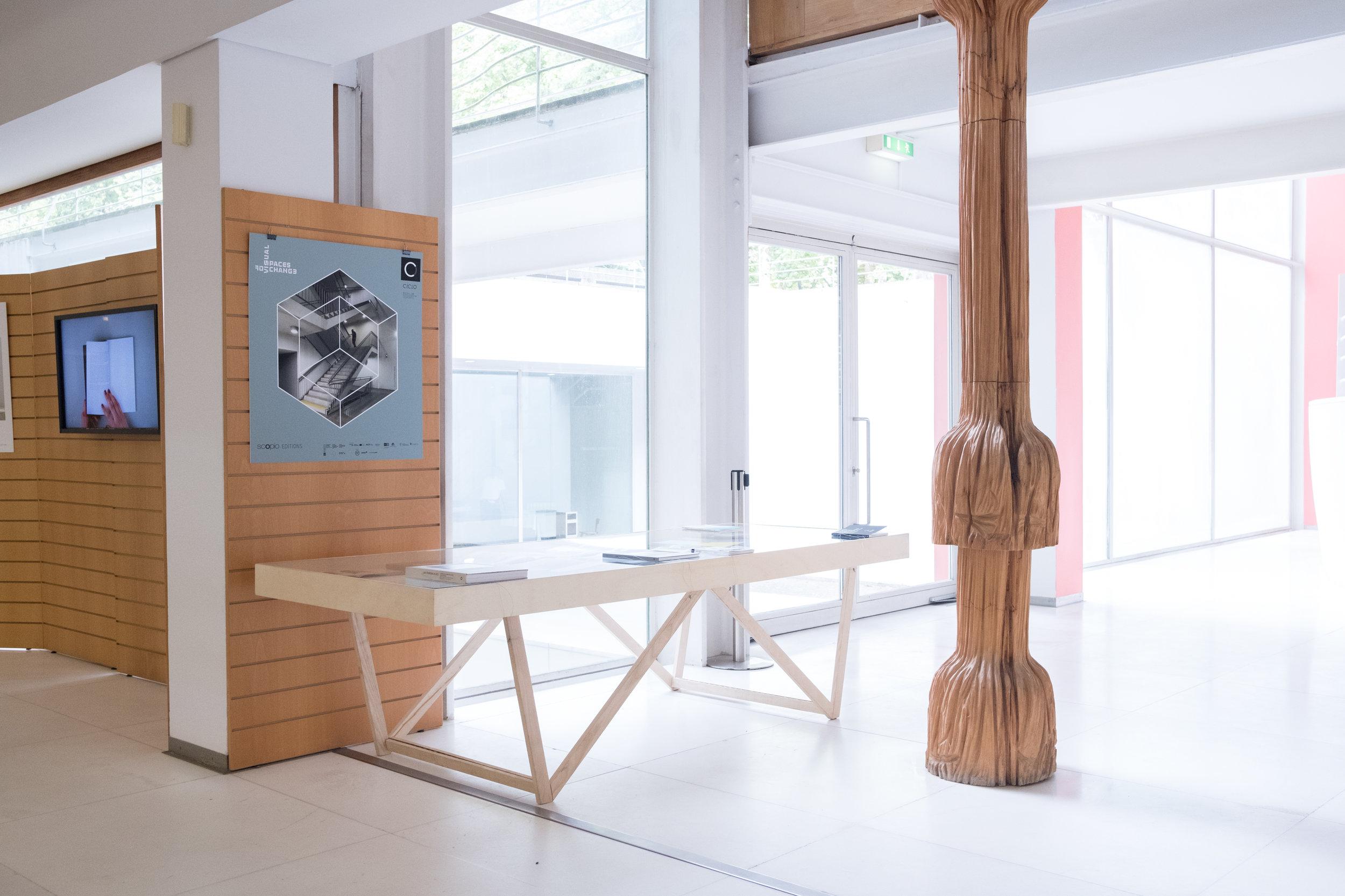 Apresentação do projecto VSC / Ci.CLO Bienal Fotografia do Porto 2019