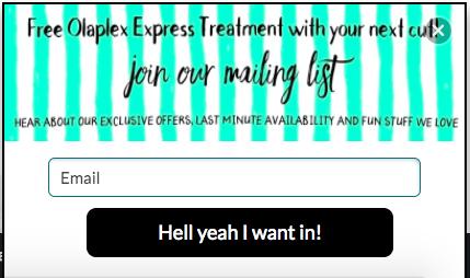 salon-website-ideas.png