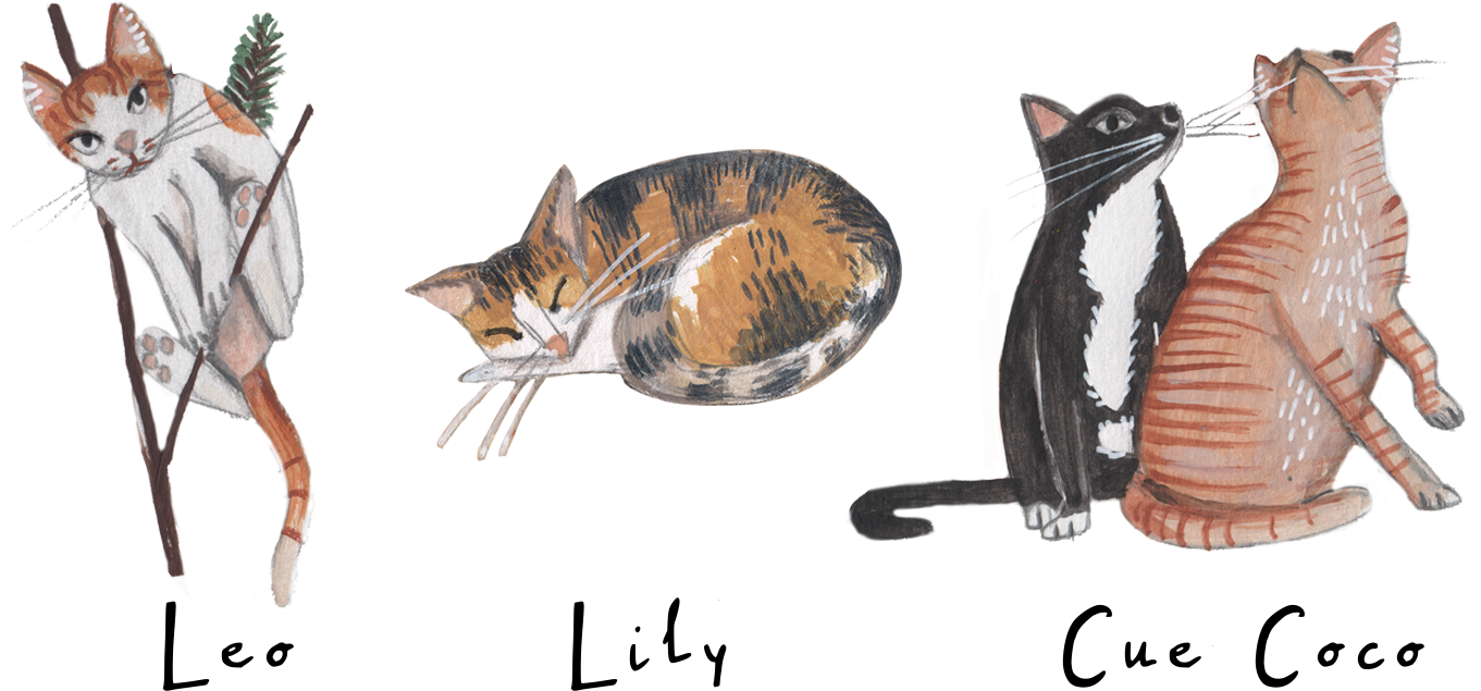 864_4 cats.png