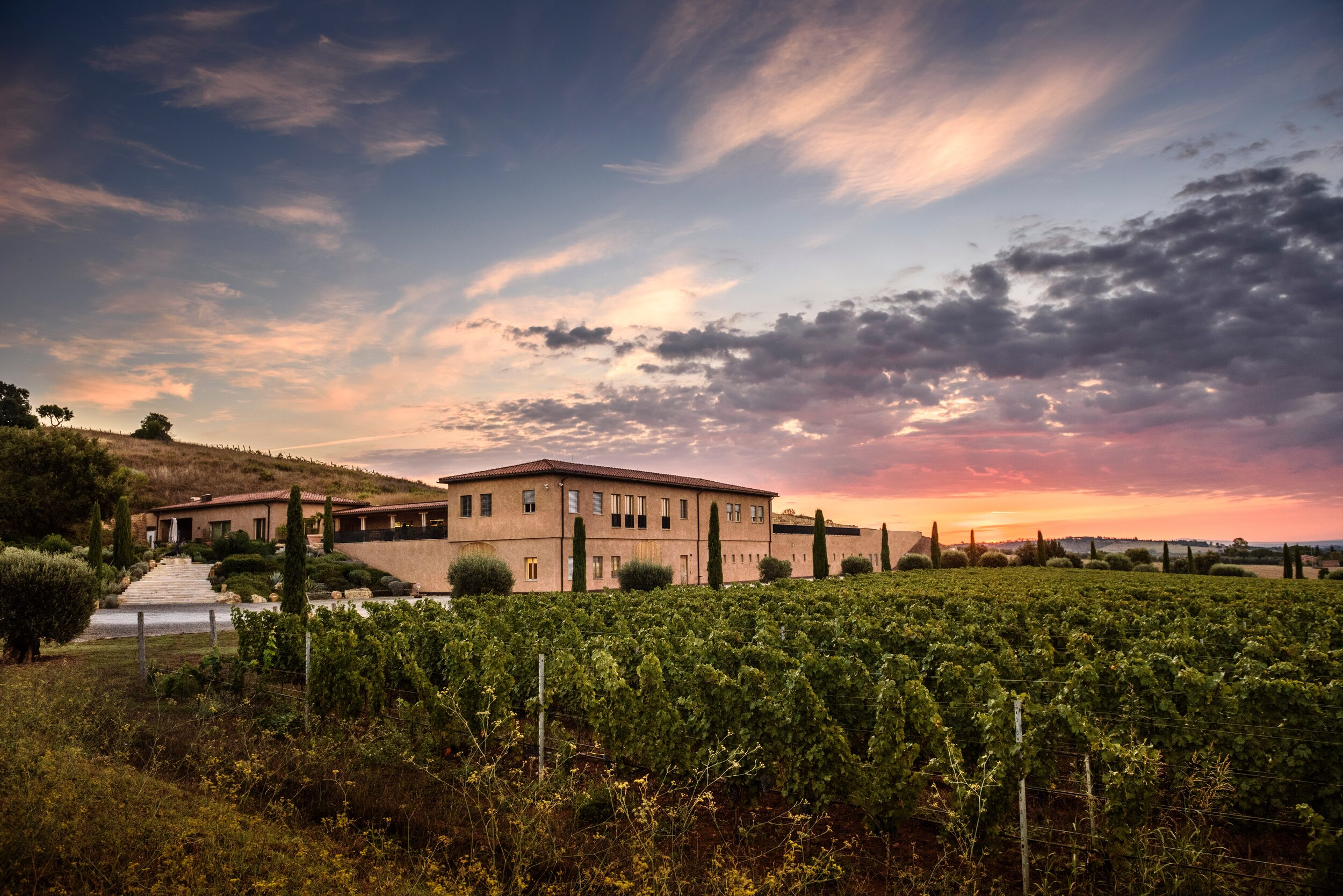 Monteverro Vineyard - An Italian pioneer winery, now at your fingertips. Read full feature here.