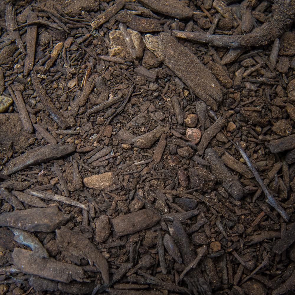 King Compost - $30.00/yard