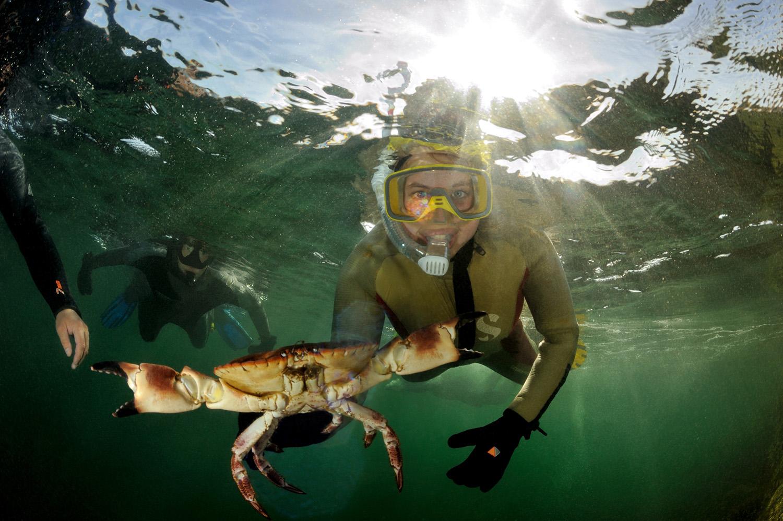 diving-crabs-Adventure-Travel-Norway-kopi.jpg