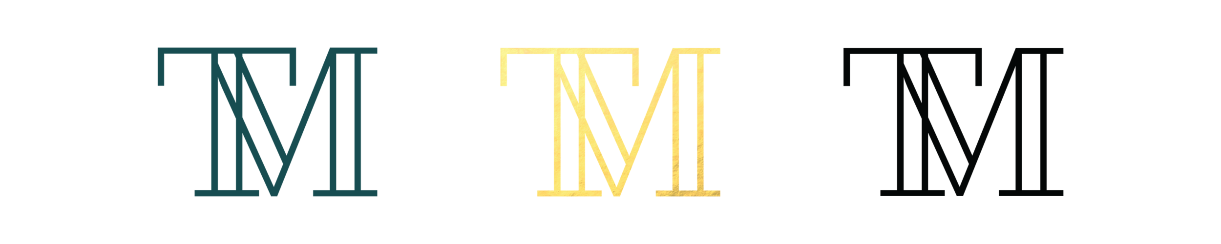 T&M_Logo_Version.png