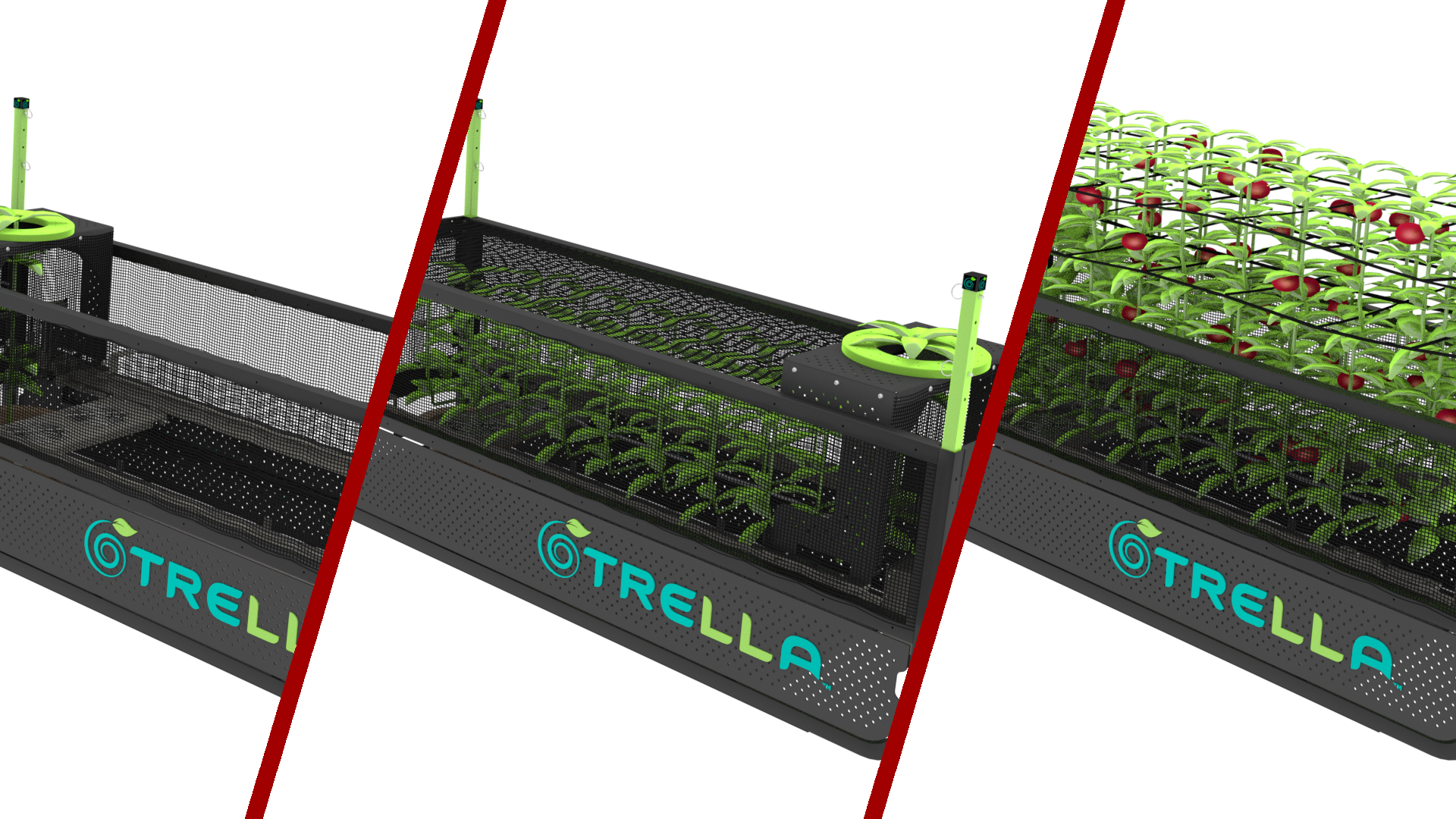 Trella Gro LST - Click here to see how we helped design an automated plant growing system for Trella Technologies