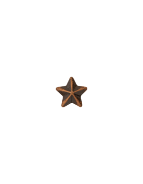 Bronze Ribbons Star.png