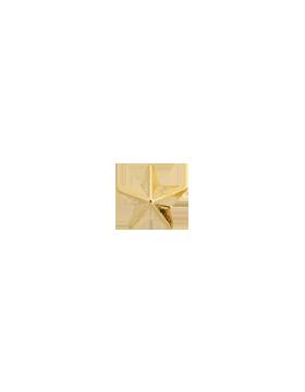 Gold Ribon Star .png