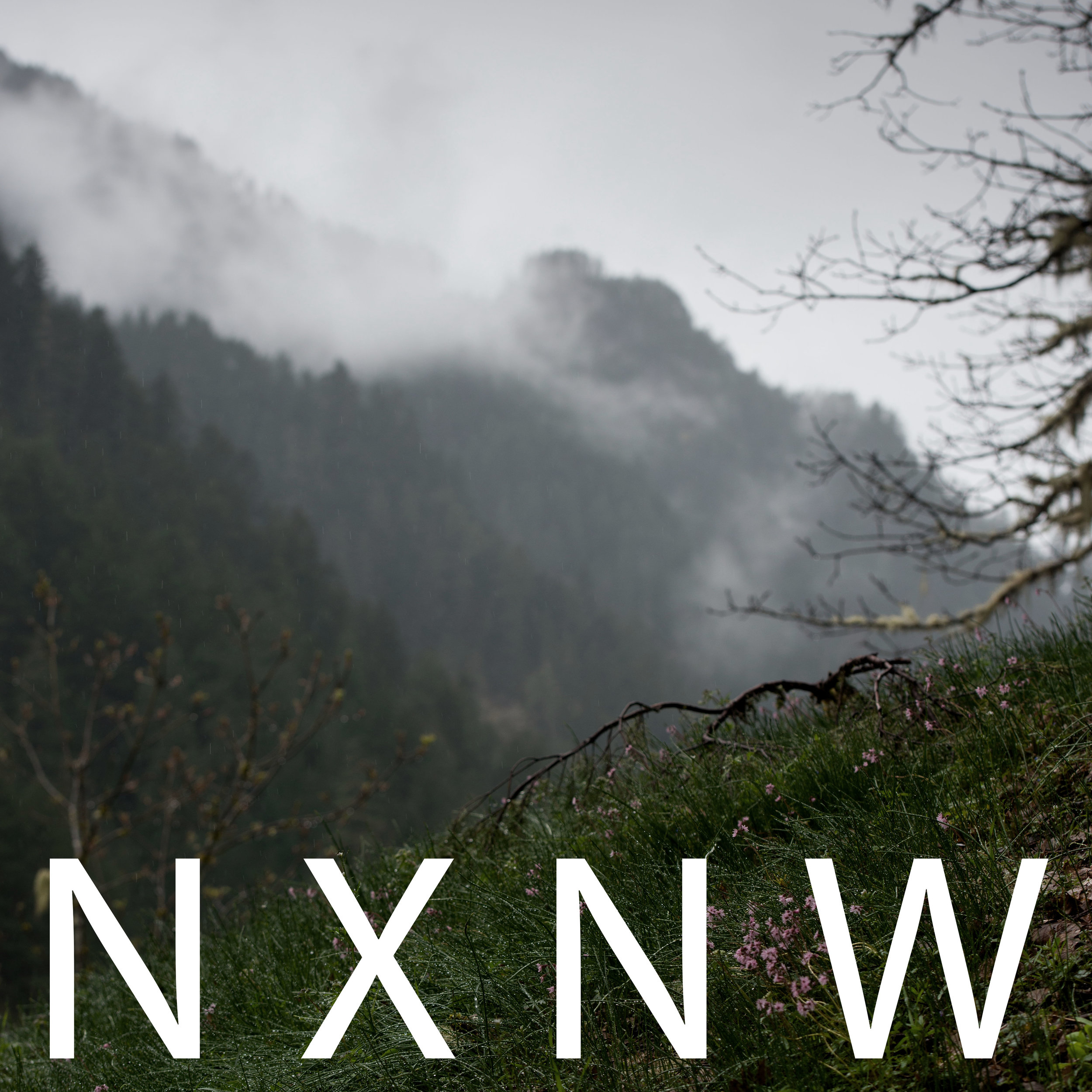 NXNW CASCADIA 2017 - This library of environmental recordings is the culmination of three recording expeditions to the stunningly gorgeous Pacific Northwest. We visited a variety of locations ranging from urban Vancouver, Portland, and Seattle to the wild and untamed Olympic Peninsula. We captured dynamically disparate sounds such as a noisy Seattle shipyard and the quietest location in the continental US - deep within the primordial Hoh Rainforest. There are excellent crowd wallas, and contemplative mountain streams. From beaches to mountaintops to luxury high rises no environment was left un-recorded! This is what the Northwest sounds like!