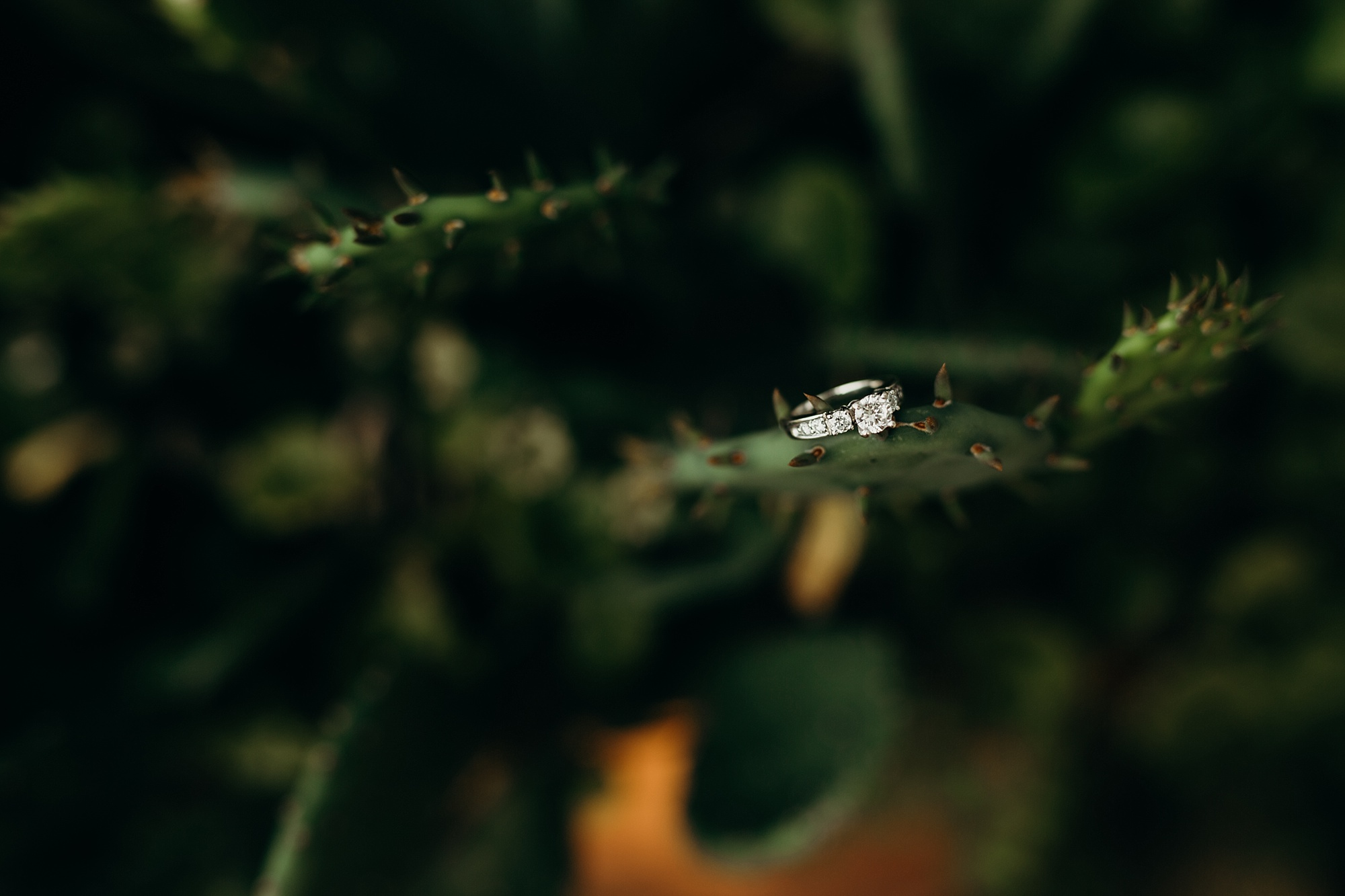 Joe_Mac_Creative_Wedding_Photography_Philadelphia_Boho_Bride_Best_Of_Haverford_College_0007.jpg
