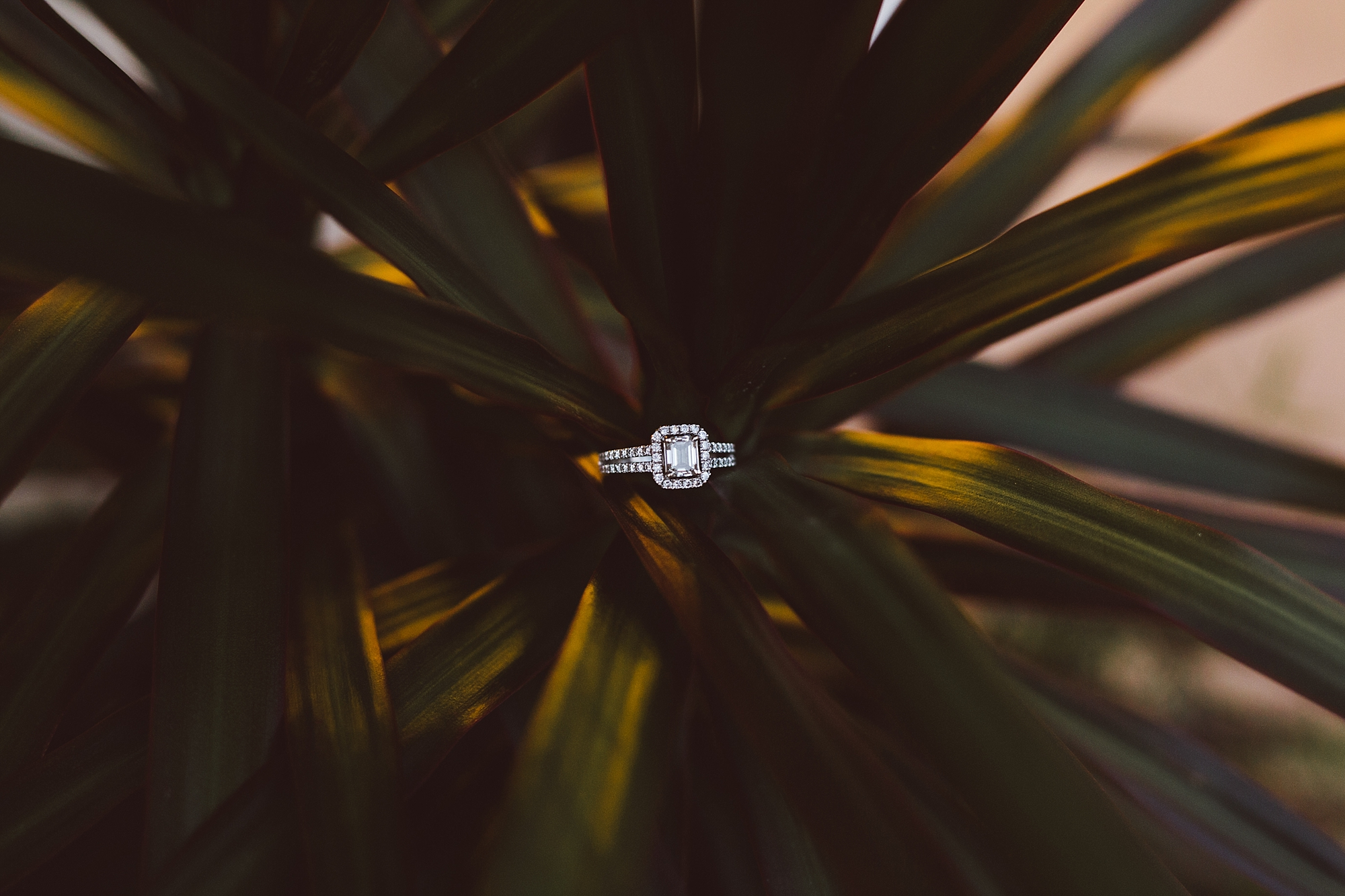 Joe_Mac_Creative_Wedding_Emgagement_Photography_Ardmore_Wedding_Philadelphila__0045.jpg