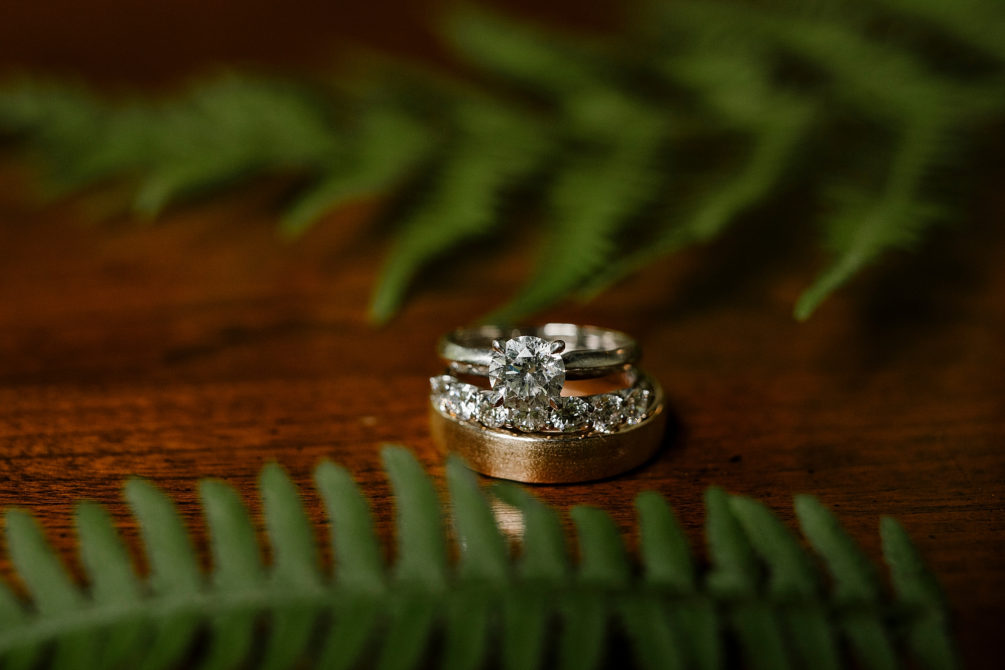 Love_by_Joe_Mac_West_Chester_Wedding_Faunbrook_Bed_and_Breakfast_Photography_0027.jpg
