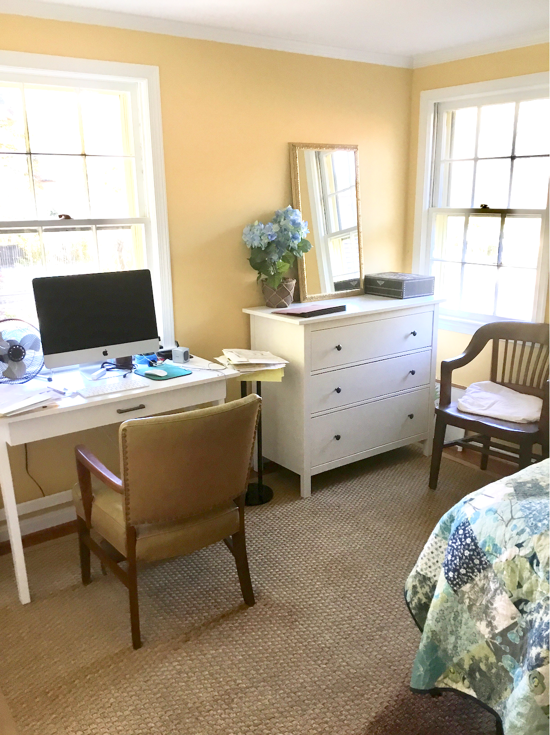 Current Guest Bedroom, Office