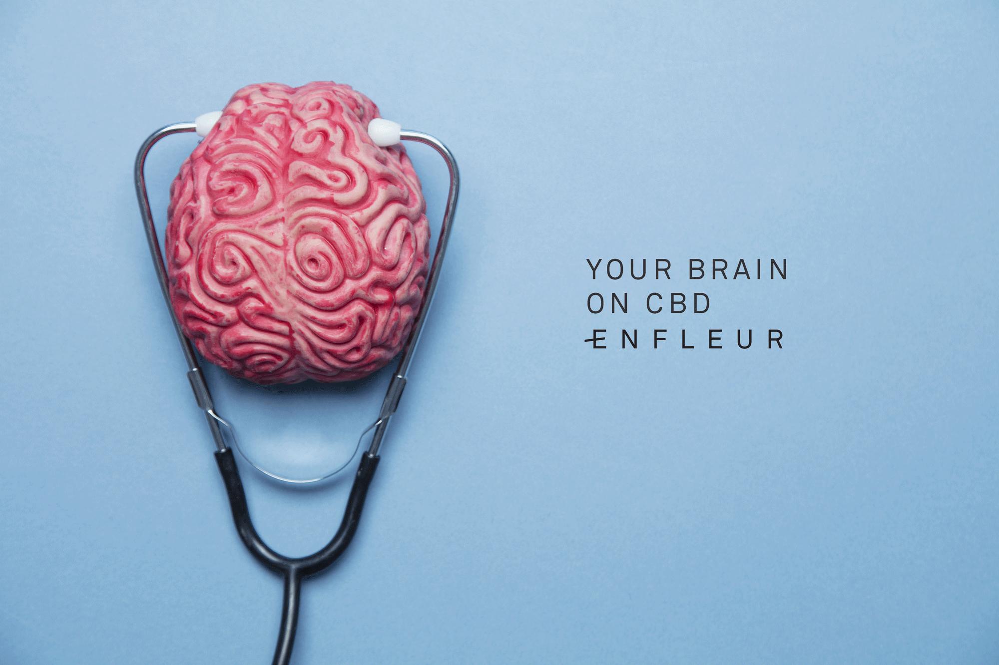 enfleur-blog-brain-psychosis-cbd.png