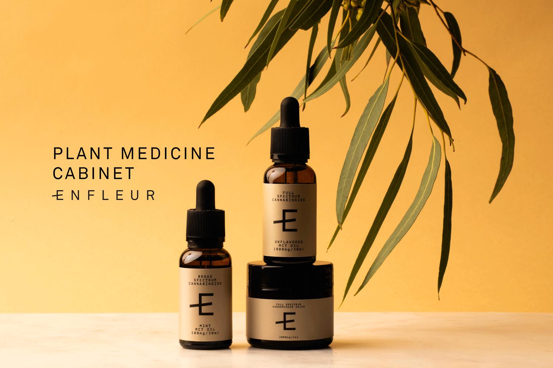 EF_Plant-Medicine-Cabinet.png