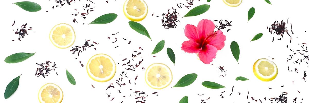 Hibiscus Lemon -