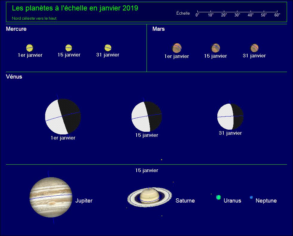 Les planètes à l'échelle pour le mois de Janvier 2019
