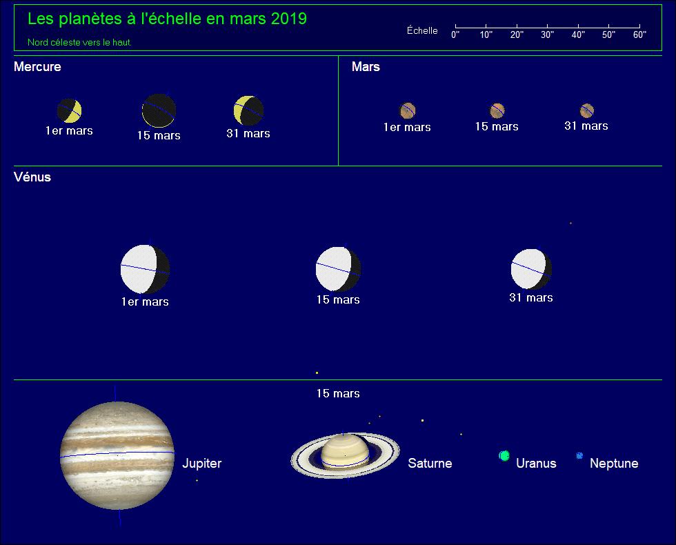 Les planètes à l'échelle pour le mois de mars 2019