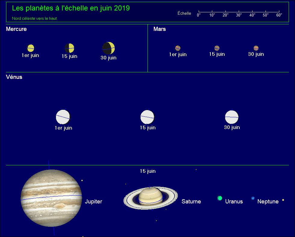 Les planètes à l'échelle pour le mois de juin 2019
