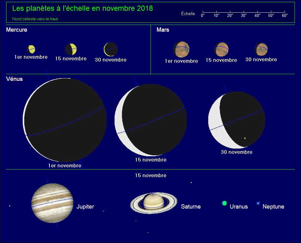 Les planètes à l'échelle pour le mois de novembre 2018