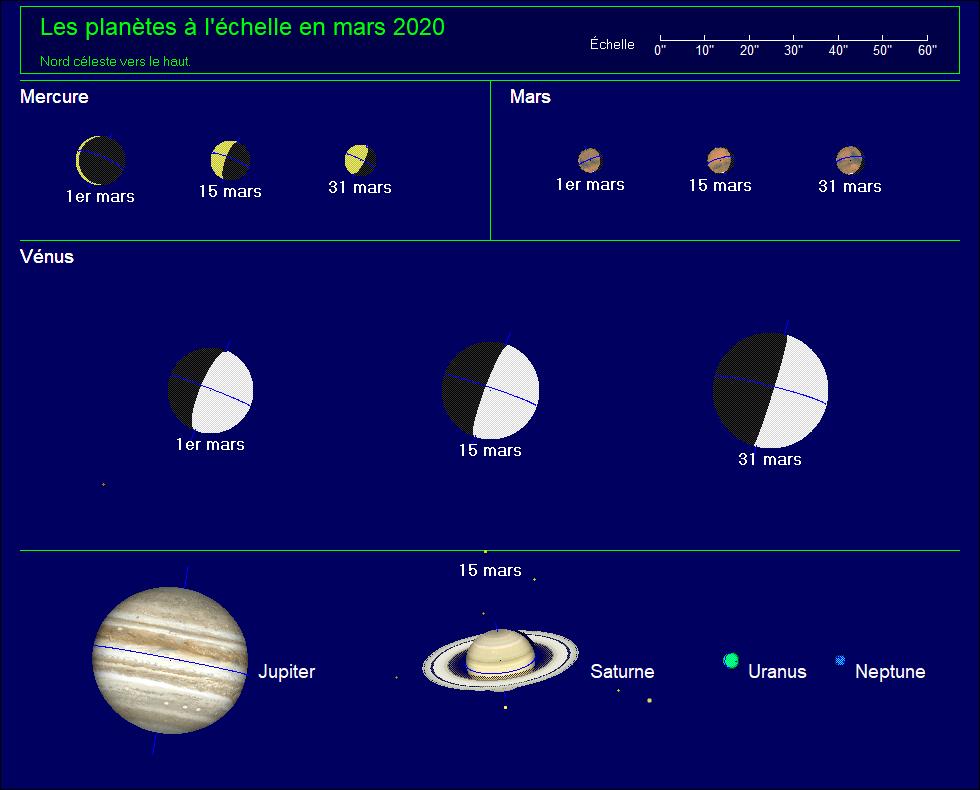 Les planètes à l'échelle pour le mois de mars 2020