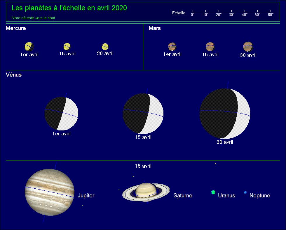 Les planètes à l'échelle pour le mois d'avril 2020