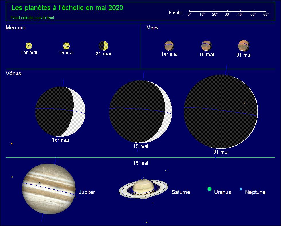 Les planètes à l'échelle pour le mois de mai 2020