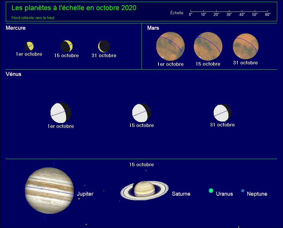 Les planètes à l'échelle pour le mois d'octobre 2020