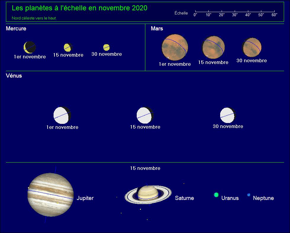 Les planètes à l'échelle pour le mois de novembre 2020