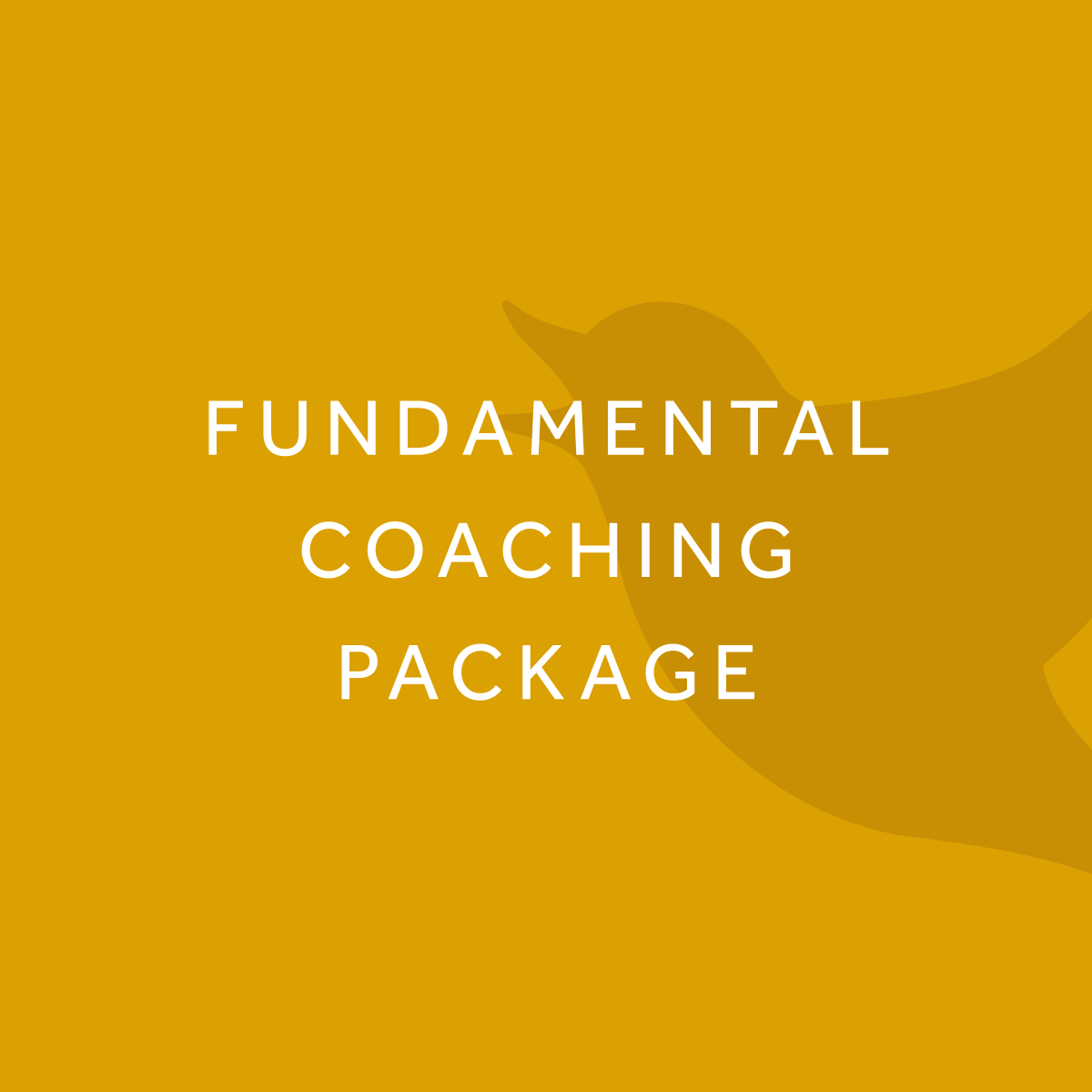 Fundamental-Coaching-Package.png