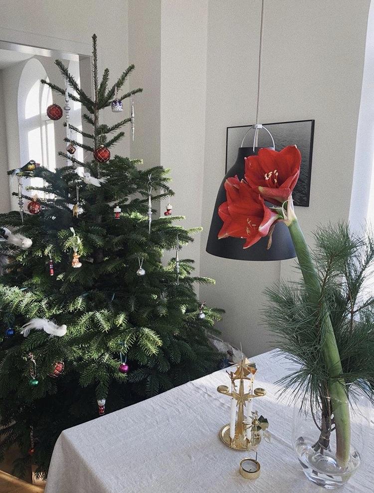 Karn's home in Copenhagen dresses up for Christmas
