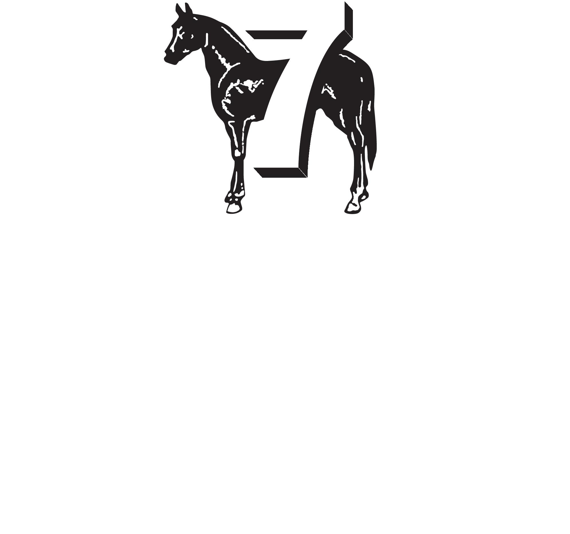 SL logo white@4x.png