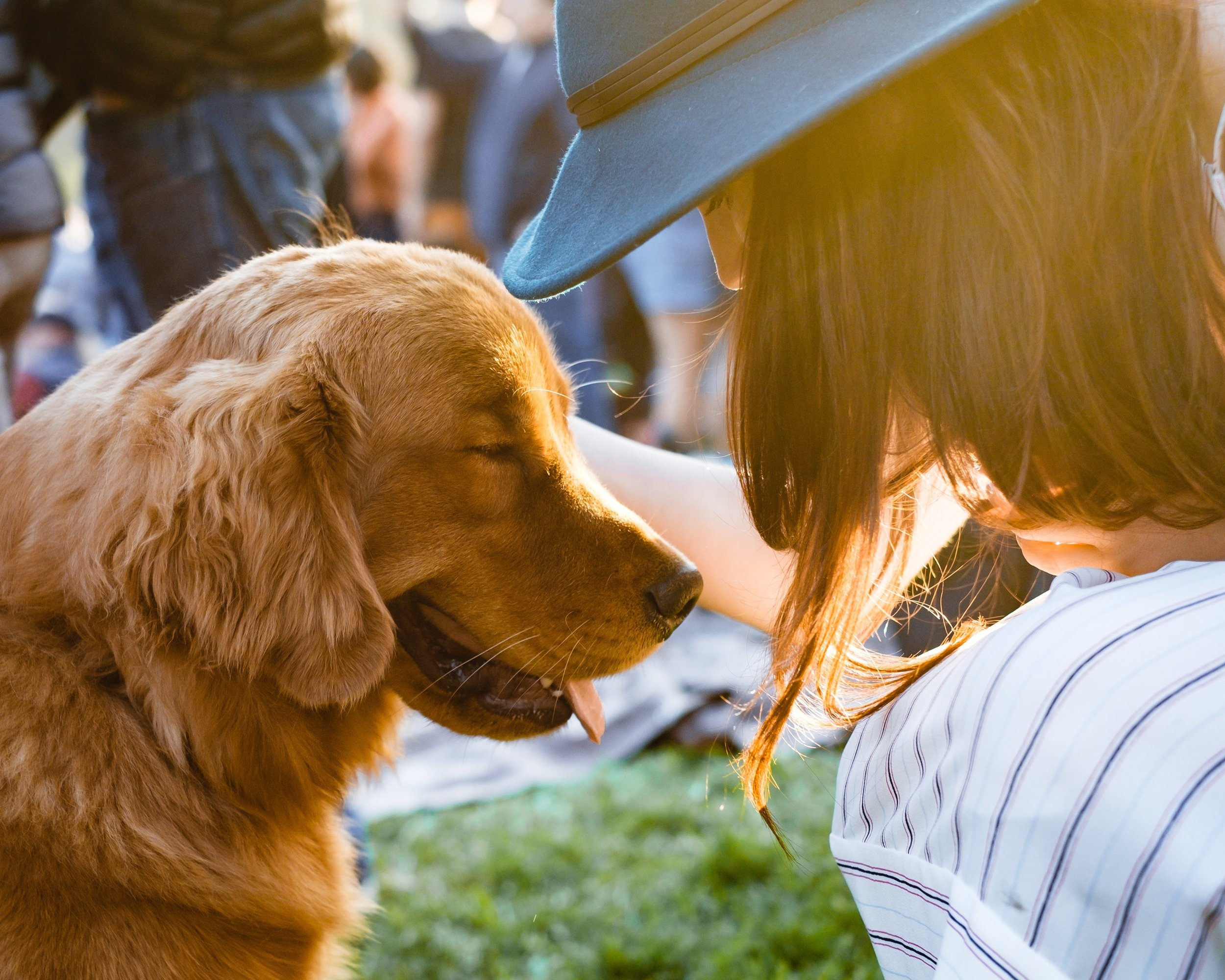 The right care for your pet. - At Goulburn Vet Clinic we work with you to care for your pet.We have longer consults, a caring team, modern technology, and no-nonsense preventative care to keep your best friend healthy and happy.