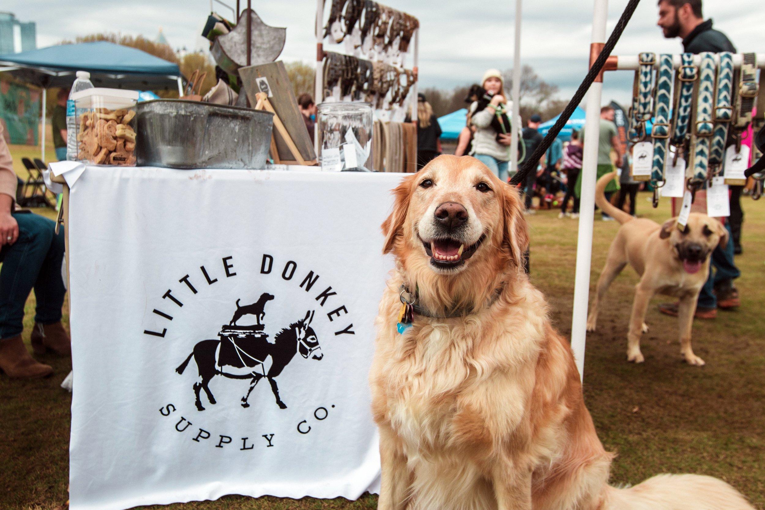 Atlanta Rescue Dog Olympics